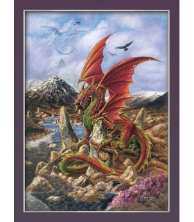 Fire Dragon Poster (30 x 40.5 cm)