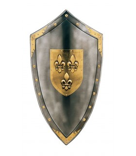 Shield with fleur de lys in the center and studded around