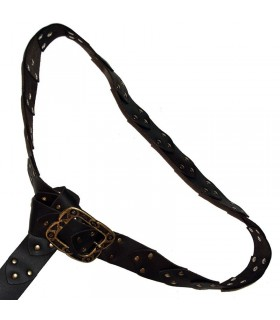 Medieval belt with rivets