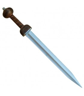 Functional Sword gladius