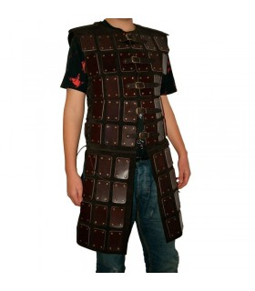 Tabard reinforced leather plates
