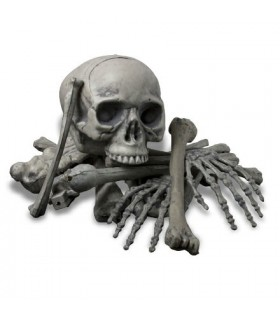 Human bones, 18 pieces