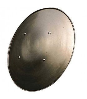 Functional vaulted shield, 58 cms.