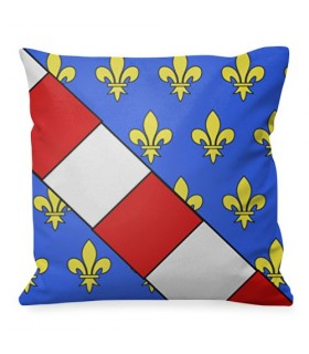 Medieval cushion Luis Coat of Arms of France