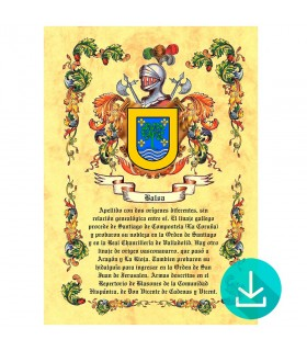 Parchment Virtual coat of arms, 1 surname