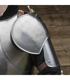 Couple of Shoulder pads Soldier Medieval