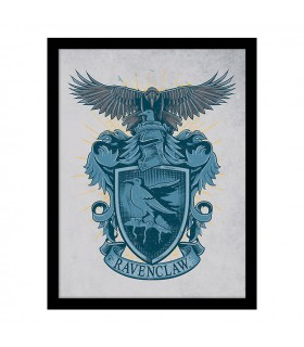 Stamped Shield of Ravenclaw, Harry Potter