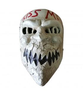 Mask fantastic Purge