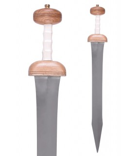 Sword Roman Gladius Mainz with sheath, century I to.C.