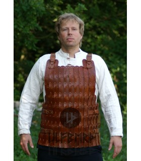Armor plates, leather