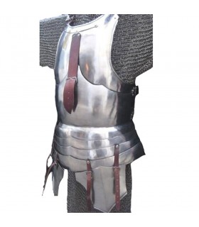 Plastron and carapace armor milanese