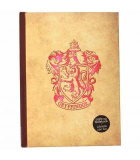 Book with light Gryffindor from Harry Potter
