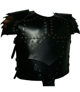 Dragon armor Armor